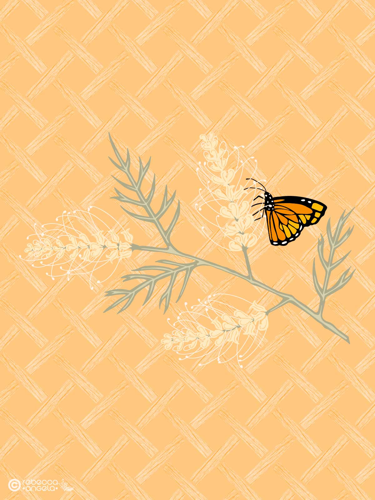 Grevillea with Butterfly